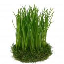 Grass on bales, D12cm, H20cm, green